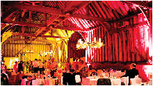Mood Lighting / Venue uplighting Services